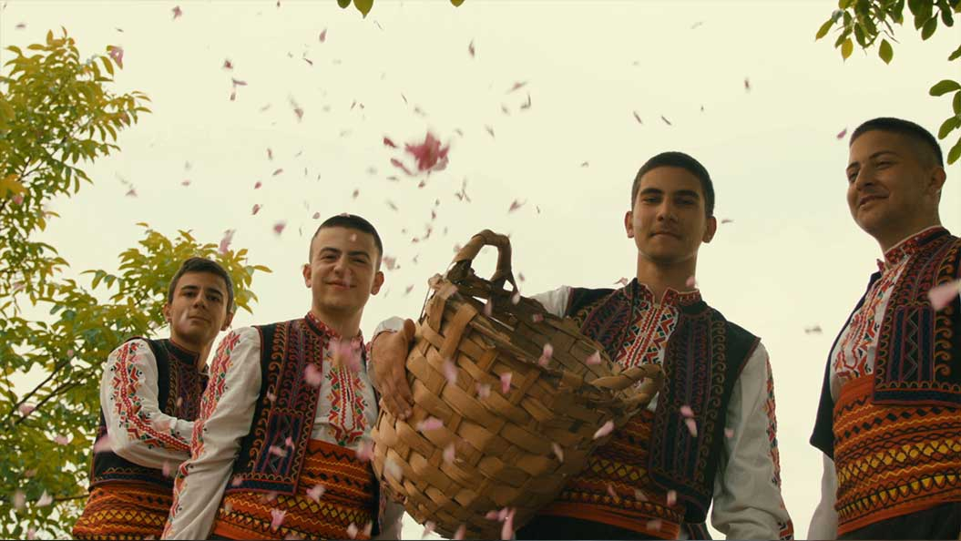 Vinka / Rosenernte in Bulgarien